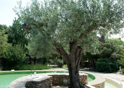 Jardin méditerranéen avec implantation piscine et terrasse bois ...